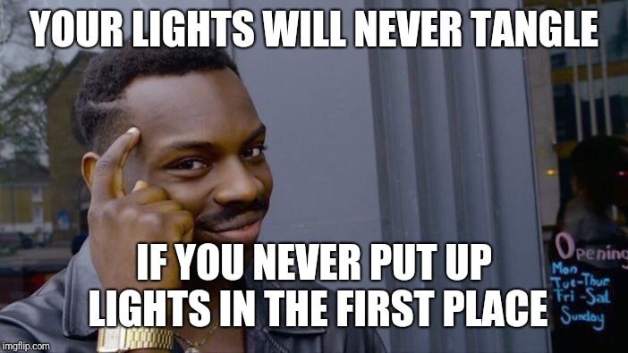 Roll Safe Think About It Meme | YOUR LIGHTS WILL NEVER TANGLE IF YOU NEVER PUT UP LIGHTS IN THE FIRST PLACE | image tagged in memes,roll safe think about it | made w/ Imgflip meme maker