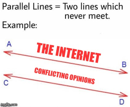 Come on, they'll always exist. It's a fact of life | THE INTERNET CONFLICTING OPINIONS | image tagged in parellel lines,memes,opinion | made w/ Imgflip meme maker