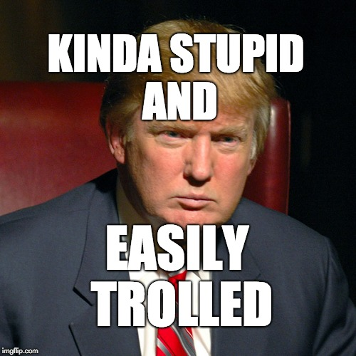 Kinda stupid and easily trolled | KINDA STUPID AND EASILY TROLLED | image tagged in trump,donald trump,maga | made w/ Imgflip meme maker