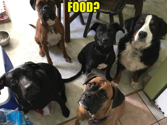FOOD? | made w/ Imgflip meme maker
