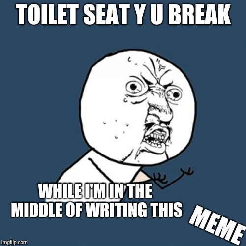 Y U No Meme | TOILET SEAT Y U BREAK WHILE I'M IN THE MIDDLE OF WRITING THIS MEME | image tagged in memes,y u no | made w/ Imgflip meme maker