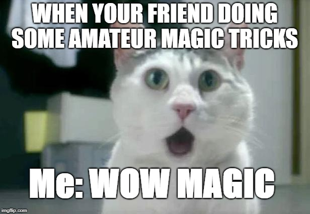 OMG Cat | WHEN YOUR FRIEND DOING SOME AMATEUR MAGIC TRICKS Me: WOW MAGIC | image tagged in memes,omg cat | made w/ Imgflip meme maker