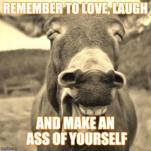 REMEMBER TO LOVE, LAUGH AND MAKE AN ASS OF YOURSELF | image tagged in be and ass | made w/ Imgflip meme maker