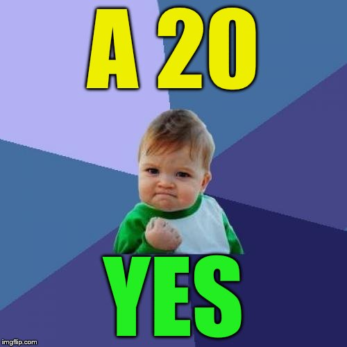 Success Kid Meme | A 20 YES | image tagged in memes,success kid | made w/ Imgflip meme maker