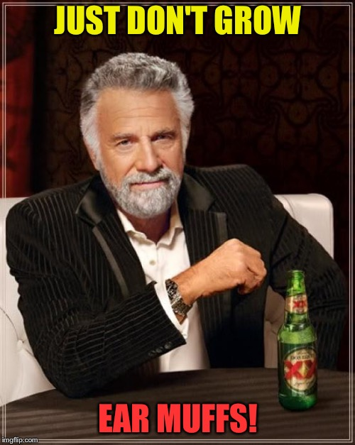 The Most Interesting Man In The World Meme | JUST DON'T GROW EAR MUFFS! | image tagged in memes,the most interesting man in the world | made w/ Imgflip meme maker