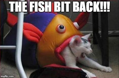 THE FISH BIT BACK!!! | made w/ Imgflip meme maker