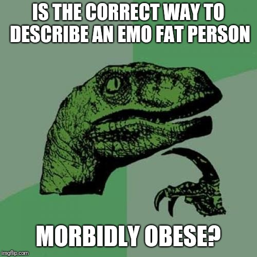Philosoraptor Meme | IS THE CORRECT WAY TO DESCRIBE AN EMO FAT PERSON MORBIDLY OBESE? | image tagged in memes,philosoraptor | made w/ Imgflip meme maker