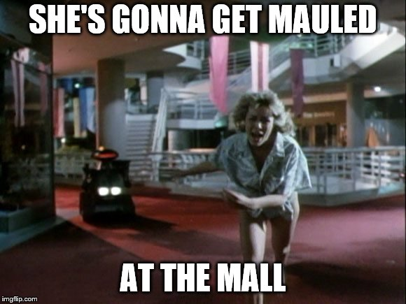 SHE'S GONNA GET MAULED AT THE MALL | made w/ Imgflip meme maker