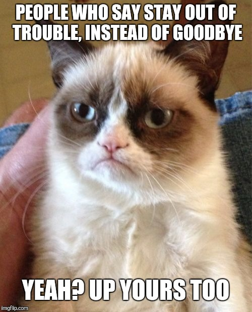 Grumpy Cat Meme | PEOPLE WHO SAY STAY OUT OF TROUBLE, INSTEAD OF GOODBYE YEAH? UP YOURS TOO | image tagged in memes,grumpy cat | made w/ Imgflip meme maker