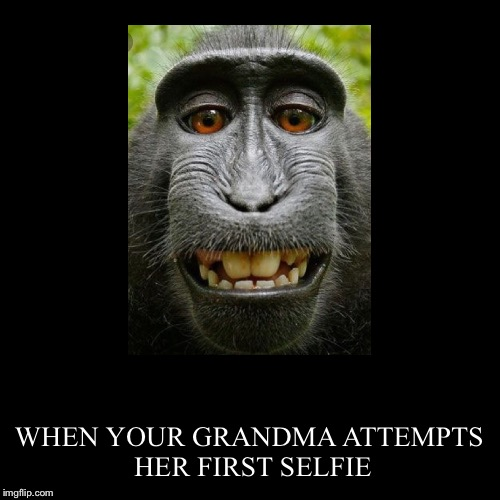 WHEN YOUR GRANDMA ATTEMPTS HER FIRST SELFIE | image tagged in funny,demotivationals | made w/ Imgflip demotivational maker