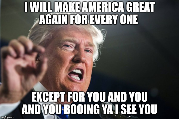 donald trump | I WILL MAKE AMERICA GREAT AGAIN FOR EVERY ONE EXCEPT FOR YOU AND YOU AND YOU BOOING YA I SEE YOU | image tagged in donald trump | made w/ Imgflip meme maker