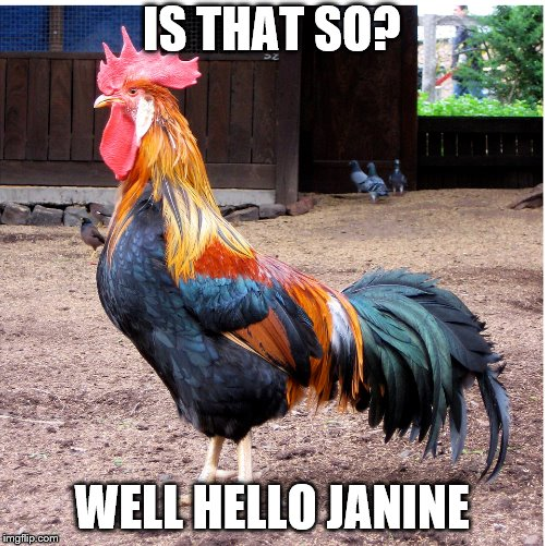 IS THAT SO? WELL HELLO JANINE | made w/ Imgflip meme maker