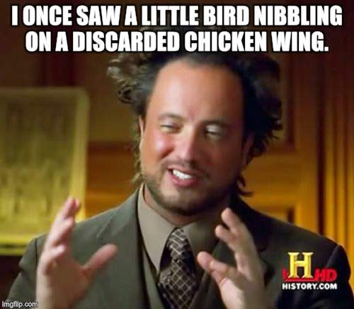 Ancient Aliens Meme | I ONCE SAW A LITTLE BIRD NIBBLING ON A DISCARDED CHICKEN WING. | image tagged in memes,ancient aliens | made w/ Imgflip meme maker
