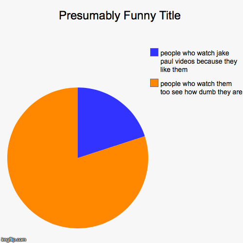 people who watch them too see how dumb they are, people who watch jake paul videos because they like them | image tagged in funny,pie charts | made w/ Imgflip pie chart maker