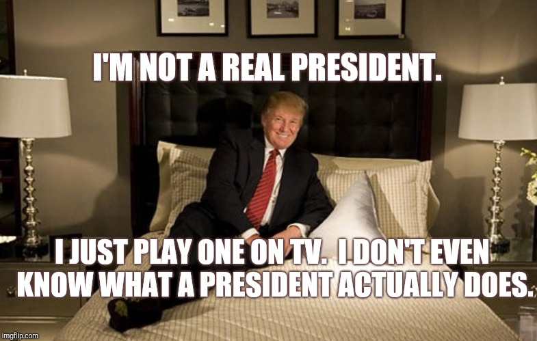 I'm not a real president. | I'M NOT A REAL PRESIDENT. I JUST PLAY ONE ON TV.  I DON'T EVEN KNOW WHAT A PRESIDENT ACTUALLY DOES. | image tagged in donald trump,pretend,president,donald trump is an idiot,trump is a moron,traitor | made w/ Imgflip meme maker