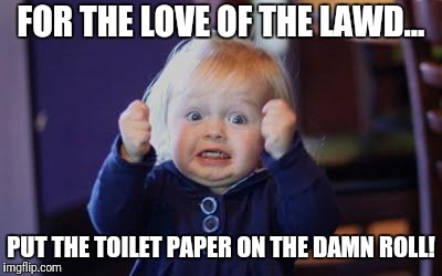 excited kid | FOR THE LOVE OF THE LAWD... PUT THE TOILET PAPER ON THE DAMN ROLL! | image tagged in excited kid | made w/ Imgflip meme maker