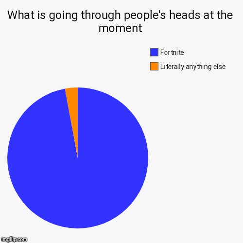 What is going through people's heads at the moment | Literally anything else, Fortnite | image tagged in funny,pie charts | made w/ Imgflip pie chart maker
