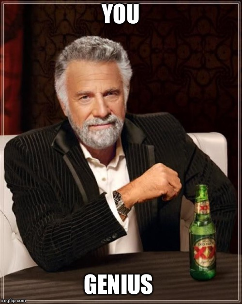 The Most Interesting Man In The World Meme | YOU GENIUS | image tagged in memes,the most interesting man in the world | made w/ Imgflip meme maker