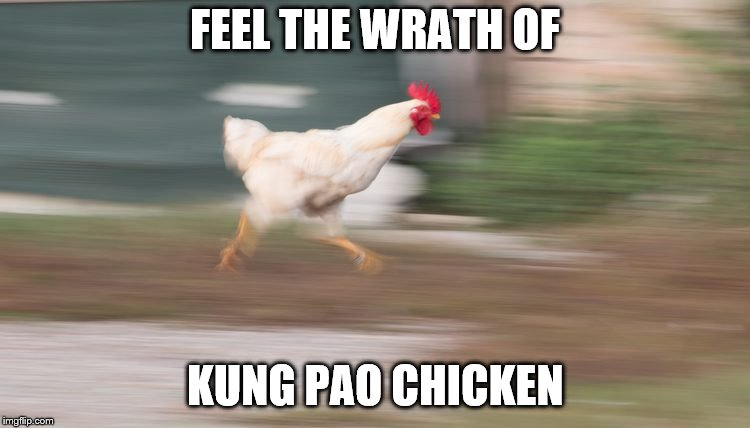 FEEL THE WRATH OF KUNG PAO CHICKEN | made w/ Imgflip meme maker