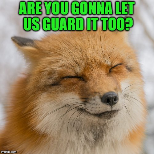 ARE YOU GONNA LET US GUARD IT TOO? | made w/ Imgflip meme maker