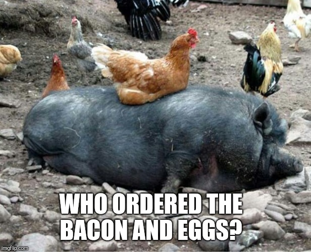 No wonder bacon and eggs are so perfect together. Chicken Week, April 2-8, a JBmemegeek & giveuahint event!  | WHO ORDERED THE BACON AND EGGS? | image tagged in chicken week,bacon,giveuahint,jbmemegeek,memes | made w/ Imgflip meme maker