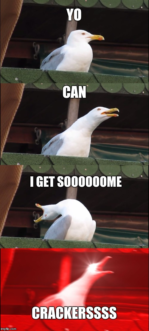 Inhaling Seagull Meme | YO CAN I GET SOOOOOOME CRACKERSSSS | image tagged in memes,inhaling seagull | made w/ Imgflip meme maker