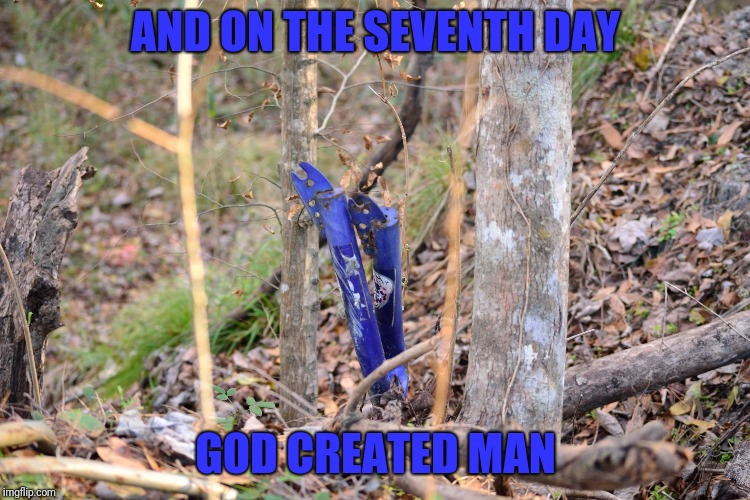 AND ON THE SEVENTH DAY GOD CREATED MAN | image tagged in bicycle tree | made w/ Imgflip meme maker