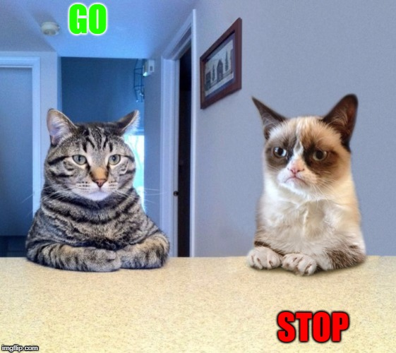 Go, STOP. | GO STOP | image tagged in grump | made w/ Imgflip meme maker