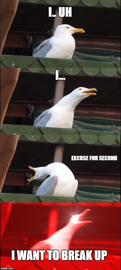 Inhaling Seagull Meme | I.. UH I... EXCUSE FOR SECOND I WANT TO BREAK UP | image tagged in memes,inhaling seagull | made w/ Imgflip meme maker