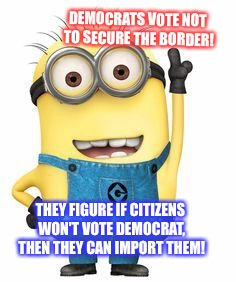 DEMOCRATS VOTE NOT TO SECURE THE BORDER! THEY FIGURE IF CITIZENS WON'T VOTE DEMOCRAT, THEN THEY CAN IMPORT THEM! | image tagged in minions | made w/ Imgflip meme maker