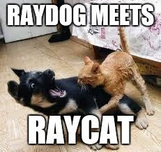 something to rub in raydogs face | image tagged in raydog | made w/ Imgflip meme maker