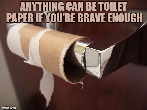 toilet paper | ANYTHING CAN BE TOILET PAPER IF YOU'RE BRAVE ENOUGH | image tagged in toilet paper,funny,memes,funny memes,brave | made w/ Imgflip meme maker