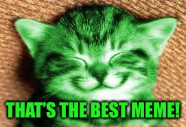 happy RayCat | THAT'S THE BEST MEME! | image tagged in happy raycat | made w/ Imgflip meme maker