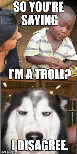 SO YOU'RE SAYING I'M A TROLL? I DISAGREE. | made w/ Imgflip meme maker