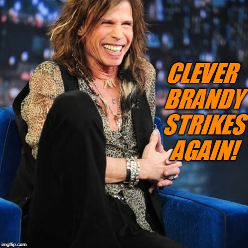 Steven Tyler | CLEVER BRANDY STRIKES AGAIN! | image tagged in steven tyler | made w/ Imgflip meme maker