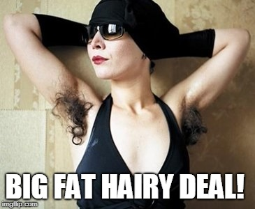 no shave november | BIG FAT HAIRY DEAL! | image tagged in no shave november | made w/ Imgflip meme maker