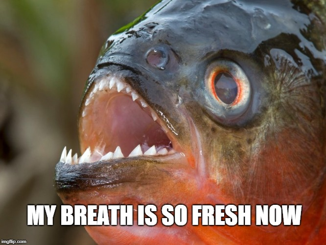 MY BREATH IS SO FRESH NOW | made w/ Imgflip meme maker