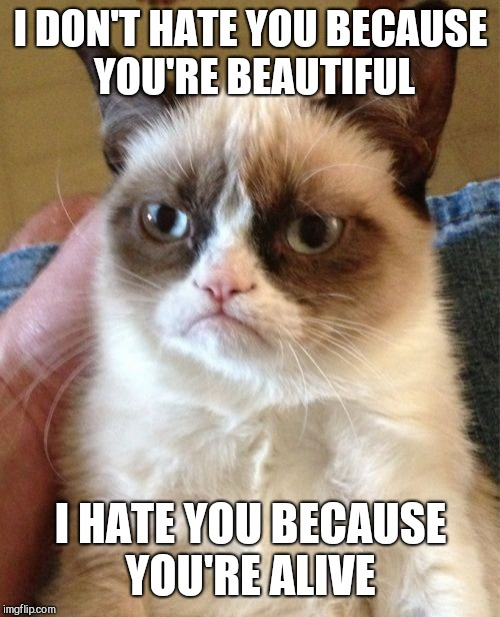 Grumpy Cat Meme | I DON'T HATE YOU BECAUSE YOU'RE BEAUTIFUL I HATE YOU BECAUSE YOU'RE ALIVE | image tagged in memes,grumpy cat | made w/ Imgflip meme maker