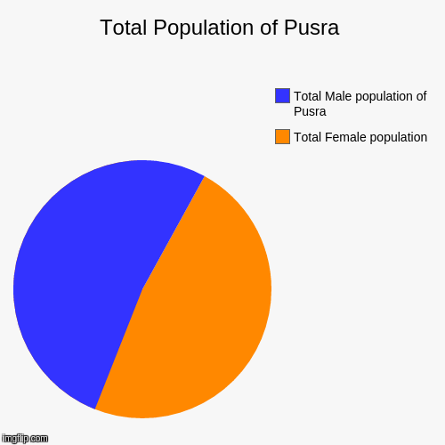 Total Population of Pusra | Total Female population, Total Male population of Pusra | image tagged in funny,pie charts | made w/ Imgflip chart maker