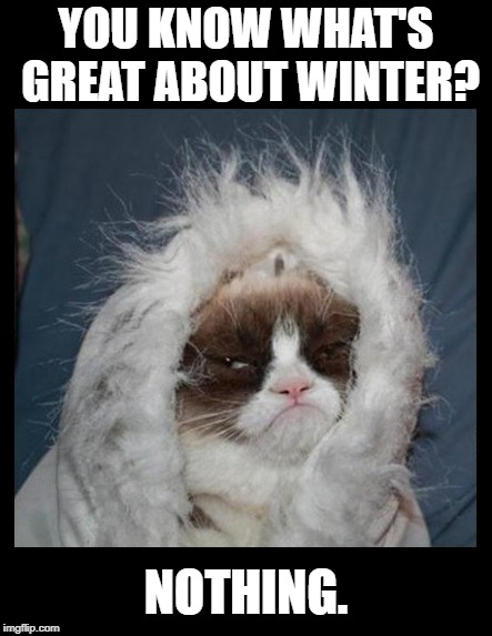 "3"" of snow today?!? 