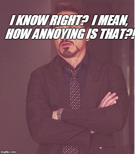 Face You Make Robert Downey Jr Meme | I KNOW RIGHT?  I MEAN, HOW ANNOYING IS THAT?! | image tagged in memes,face you make robert downey jr | made w/ Imgflip meme maker