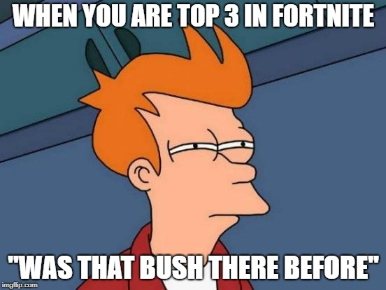 "Futurama Fry Meme | WHEN YOU ARE TOP 3 IN FORTNITE ""WAS THAT BUSH THERE BEFORE"" 