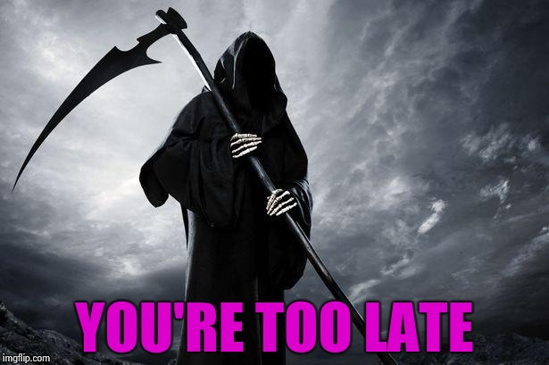 Grim Reaper | YOU'RE TOO LATE | image tagged in grim reaper | made w/ Imgflip meme maker