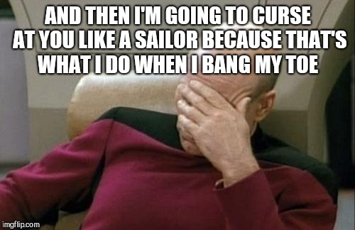 Captain Picard Facepalm Meme | AND THEN I'M GOING TO CURSE AT YOU LIKE A SAILOR BECAUSE THAT'S WHAT I DO WHEN I BANG MY TOE | image tagged in memes,captain picard facepalm | made w/ Imgflip meme maker