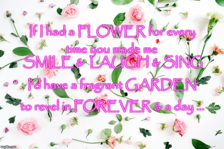 Fragrant Flower Garden  | If I had a FLOWER for every to revel in FOREVER & a day ... time you made me SMILE &  LAUGH & SING I'd have a fragrant GARDEN | image tagged in forever friends,smile  laugh  sing,forever  a day | made w/ Imgflip meme maker