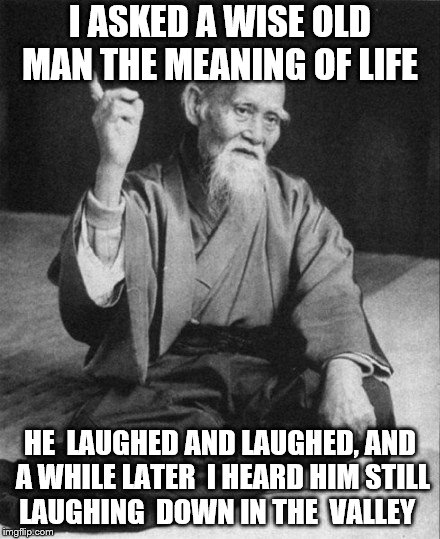 I ASKED A WISE OLD MAN THE MEANING OF LIFE HE  LAUGHED AND LAUGHED, AND A WHILE LATER  I HEARD HIM STILL LAUGHING  DOWN IN THE  VALLEY | image tagged in wise old asian | made w/ Imgflip meme maker
