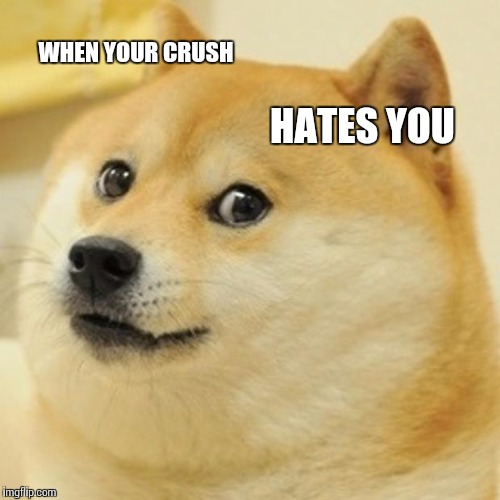 Doge Meme | WHEN YOUR CRUSH HATES YOU | image tagged in memes,doge | made w/ Imgflip meme maker