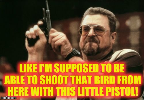 Am I The Only One Around Here Meme | LIKE I'M SUPPOSED TO BE ABLE TO SHOOT THAT BIRD FROM HERE WITH THIS LITTLE PISTOL! | image tagged in memes,am i the only one around here | made w/ Imgflip meme maker