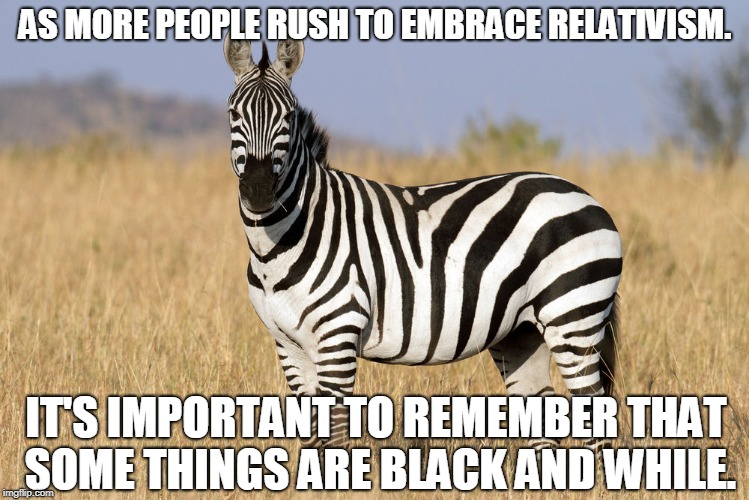 Black and White, Up and Town | AS MORE PEOPLE RUSH TO EMBRACE RELATIVISM. IT'S IMPORTANT TO REMEMBER THAT SOME THINGS ARE BLACK AND WHILE. | image tagged in zebra,truth,memes,philosophy | made w/ Imgflip meme maker