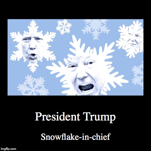 President Trump | President Trump | Snowflake-in-chief | image tagged in funny,demotivationals,special snowflake | made w/ Imgflip demotivational maker